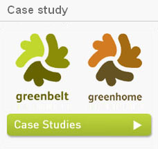 Green Belt Case Study